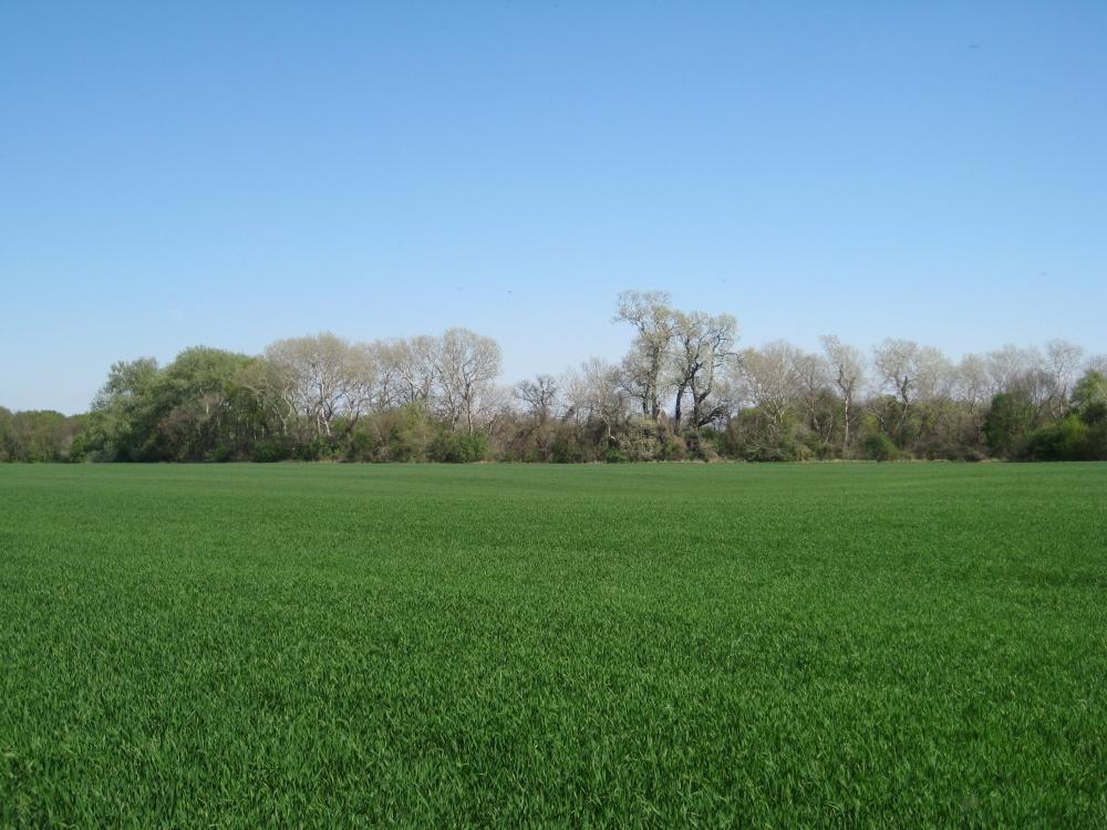 Foto: (c) life-science, Biodiversität versus Landnutzung